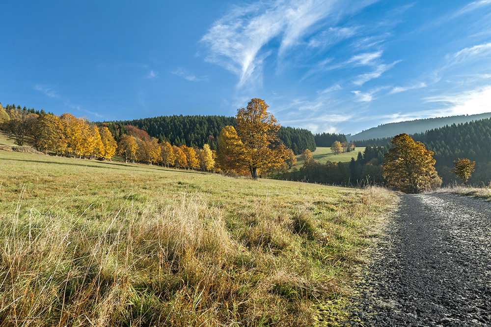 Velké Vrbno - podzim