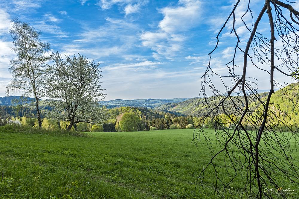 Louky a pastviny v okolí Branné