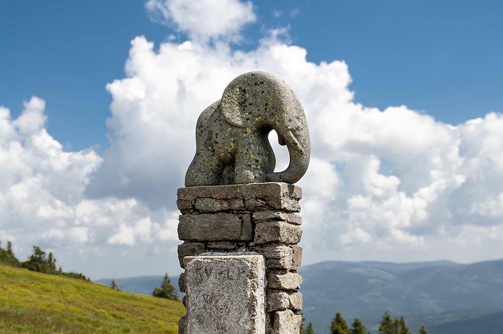 Slůně-žulová soška slona poblíž vrcholu Kralického Sněžníku