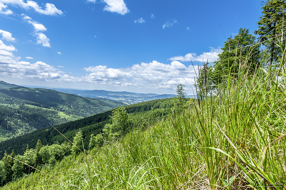 Pohled z Mračné na Černavu a Troják. V pozadí údolí Branné.