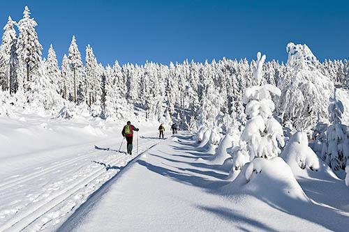 Běžkařské trasy - Ostružná a okolí