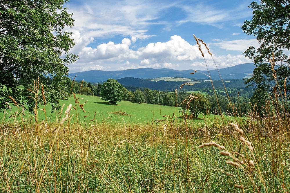 Pohled na Keprnickou hornatinu od Starého kopce
